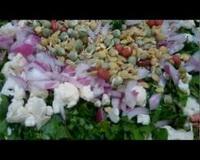 salata-od-mladih-tikvica