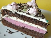 Torta-sa-višnjama-i-slatkom-pavlakom