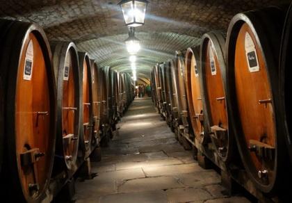 Šta treba znati do pripremanje vina