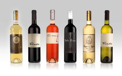 Sorte ili vrsta vina